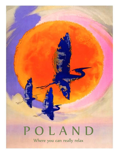 Stork Painting - Poland, Flying Storks On The Sun, Travel Poster by Long Shot