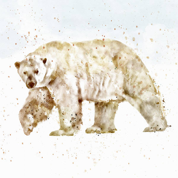 Zoology Painting - Polar Bear Watercolor by Marian Voicu