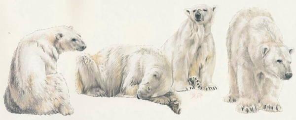 Mixed Media - Polar Bear Wrap by Barbara Keith
