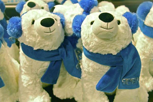 Ear Muffs Photograph - Polar Bears by Denise Mazzocco