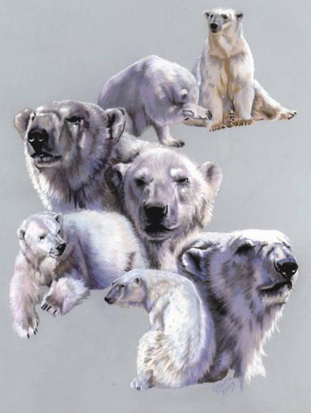 Pastel - Arctic King by Barbara Keith