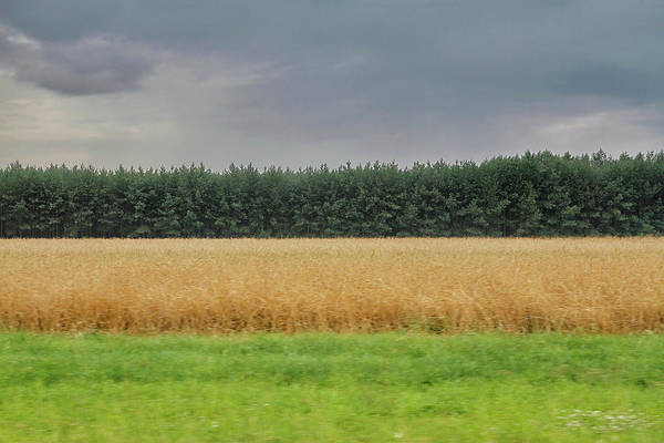 Photograph - Polish Countryside From A Moving Car by Robert Woodward