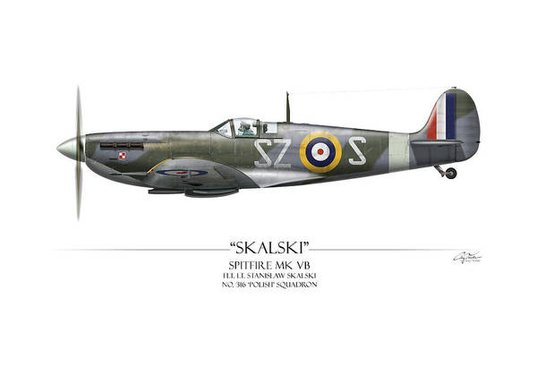 World War 1 Digital Art - Polish Spitfire Mk V - White Background by Craig Tinder