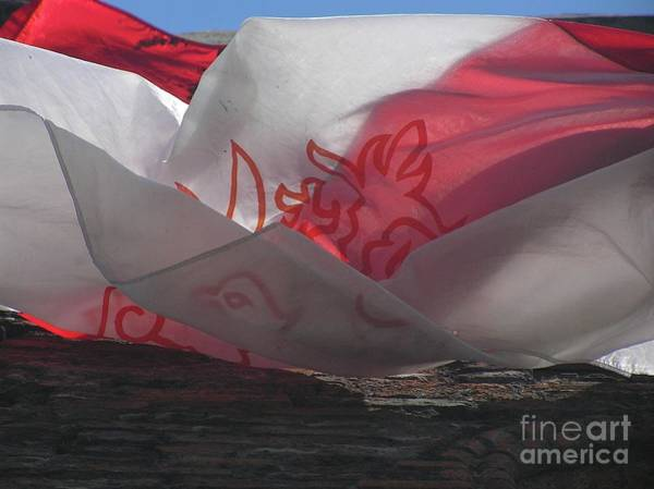 Photograph - Polishflag by Mary Kobet
