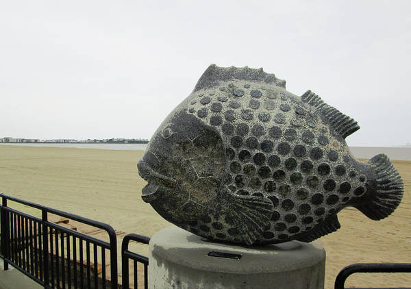 Photograph - Polka Dotted Fish Sculpture by Mary Capriole