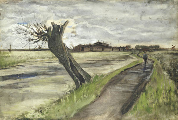 Gloomy Painting - Pollard Willow, 1882 by Vincent Van Gogh