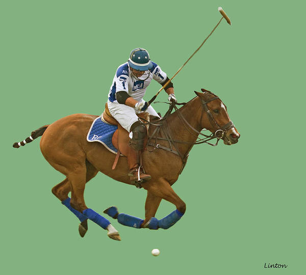 Photograph - Polo 3 by Larry Linton