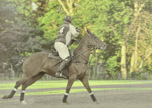 Photograph - Polo Play by JAMART Photography