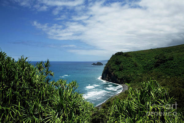 Photograph - Pololu Valley Lookout by Charmian Vistaunet