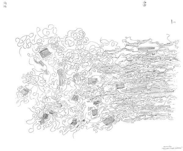 Drawing - Polymer Fiber Spinning by Regina Valluzzi