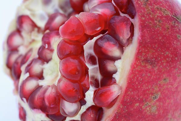 Wall Art - Photograph - Pomegranate by Frank Tschakert