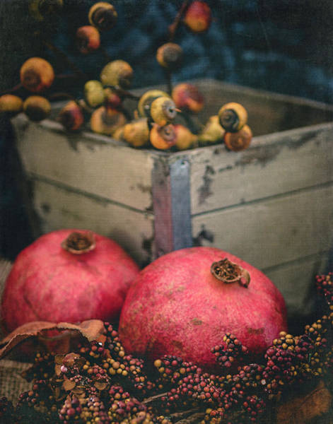 Photograph - Pomegranate Still Life Vertical by Teresa Wilson