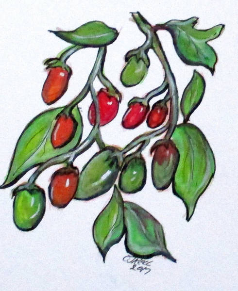 Painting - Pomodoro Buds by Clyde J Kell