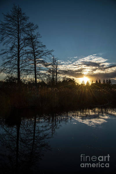 Photograph - Pond At Sunset-rawlinson Park by Steve Somerville
