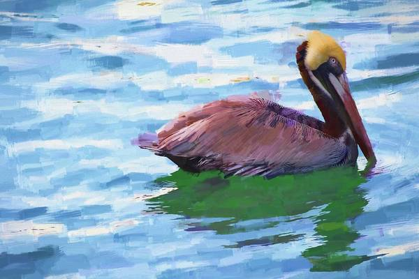 Photograph - Ponce Inlet Brown Pelican by Alice Gipson