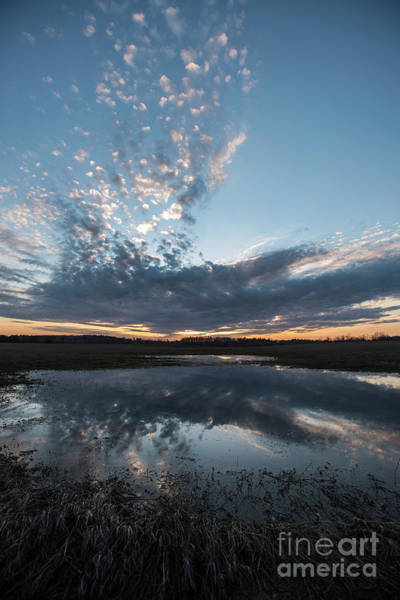 Photograph - Pond And Sky Reflection3 by Steve Somerville