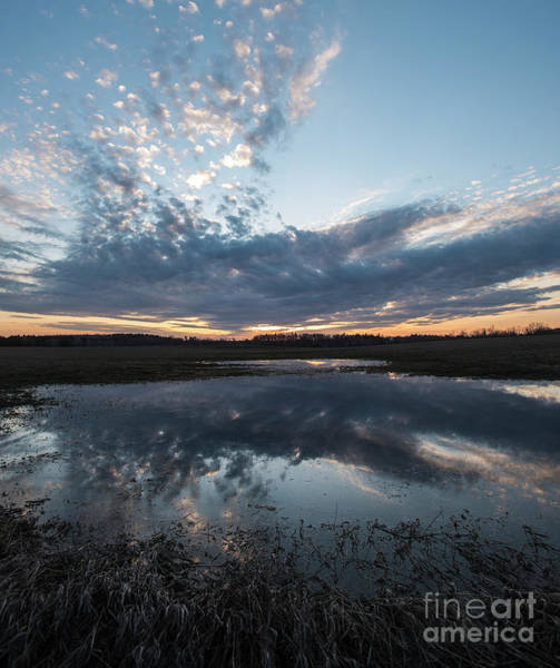 Photograph - Pond And Sky Reflection3a by Steve Somerville