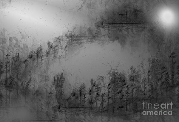 Abstract Expressionist Drawing - Pond By Moonlight by John Krakora