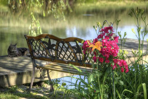 Photograph - Pond Dreams 11 by Sam Davis Johnson