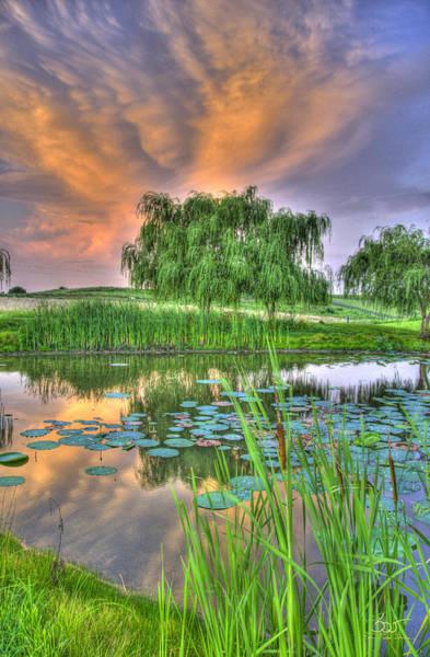 Photograph - Pond Dreams 4 by Sam Davis Johnson