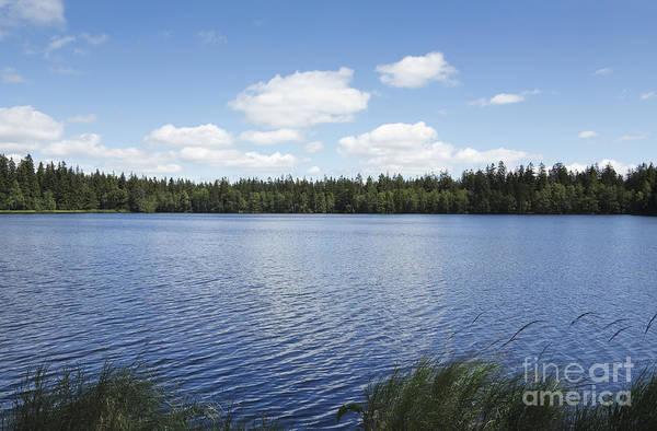 Woodland Wall Art - Photograph - Pond In The Natural Preserve  Kladska Peats by Michal Boubin