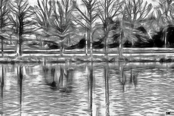 Photograph - Pond Shadows by Gina O'Brien