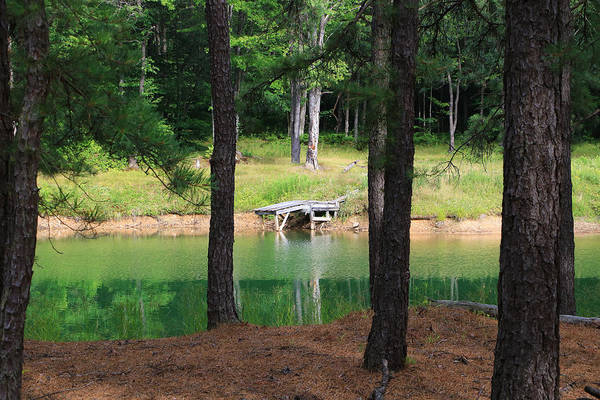 Photograph - Pond Side Dock by Rick Morgan