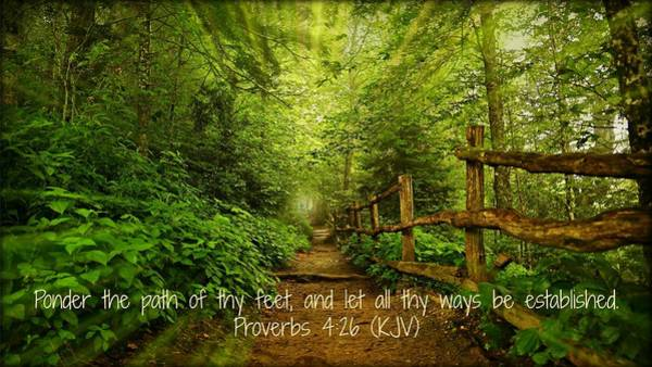Proverb Photograph - Ponder Thy Path by Stephen Stookey