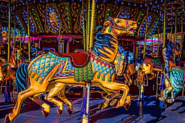 Photograph - Poney Ride At The Fair by Garry Gay