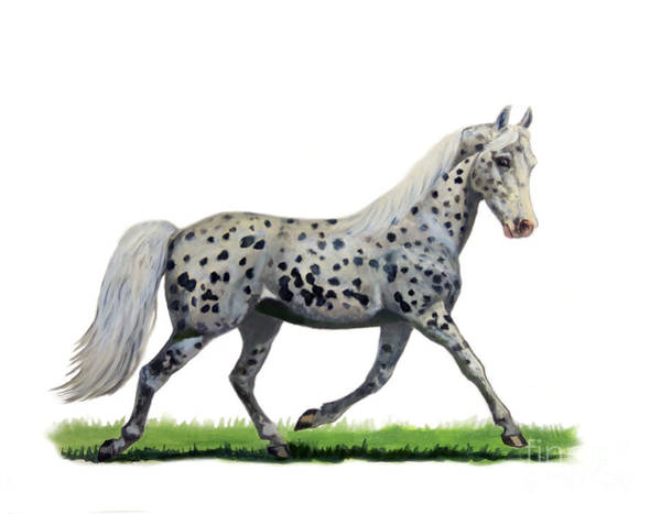 Wall Art - Painting - Pony by Jeanne Newton Schoborg