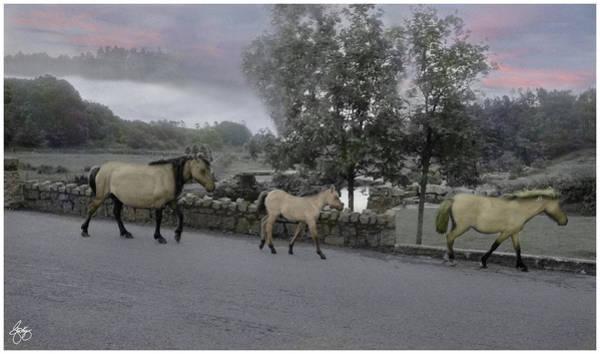 Photograph - Pony Parade by Wayne King