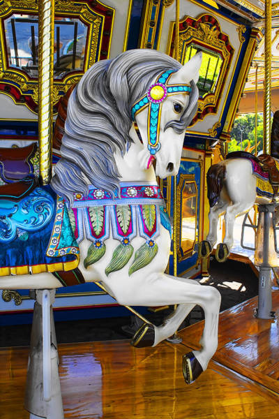 Photograph - Pony Carousel - Pony Series 5 by Carlos Diaz