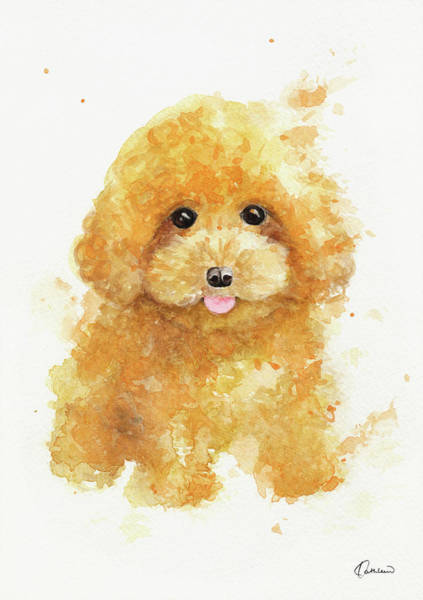Wall Art - Painting - Poodle Puppy by Kathleen Wong