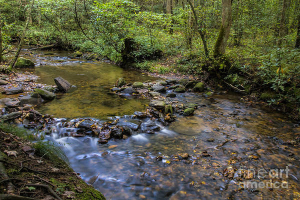 Photograph - Pool At Cooper Creek by Barbara Bowen