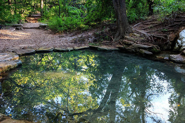 Photograph - Pool In The Woods by Richard Smith