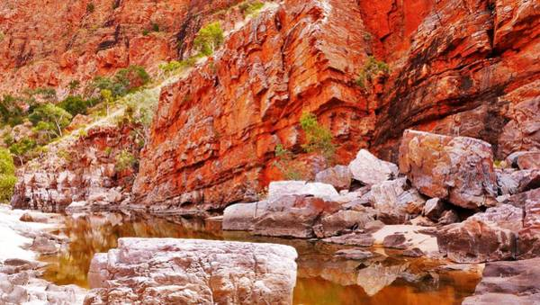 Photograph - Pools - Ormiston Gorge by Lexa Harpell