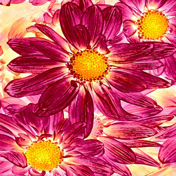 Wall Art - Painting - Pop Art Daisies 14 Square by Amy Vangsgard