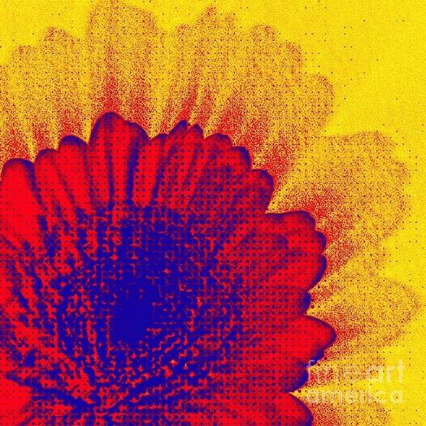 Photograph - Pop Flower by Tatiana Travelways