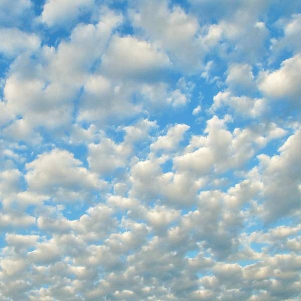 Photograph - Popcorn Clouds by Marianna Mills