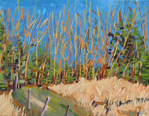 Watershed Painting - Poplar Sunset by Phil Chadwick