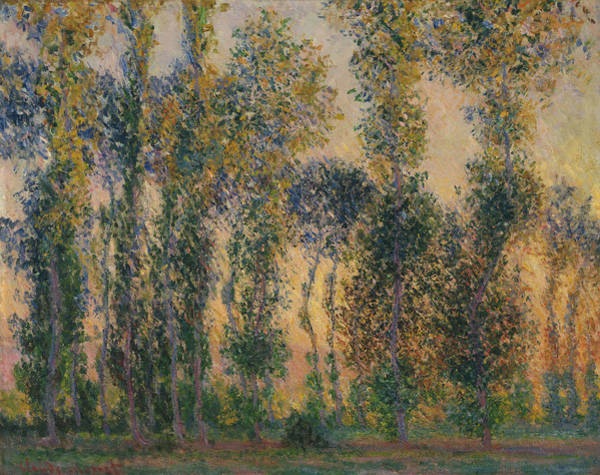 Painting - Poplars At Giverny, Sunrise by Claude Monet