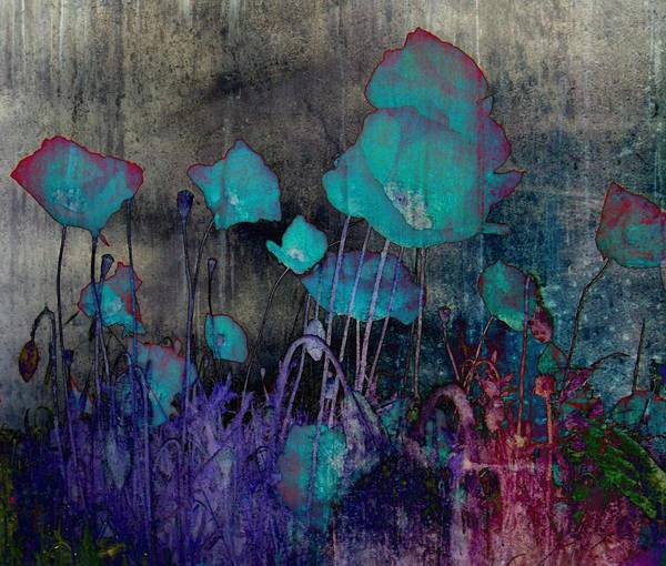 Photograph - Poppies Abstract by Marianna Mills