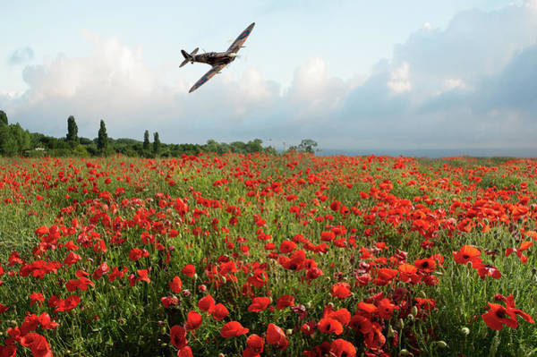 Photograph - Poppies And Polish Spitfire Vb by Gary Eason