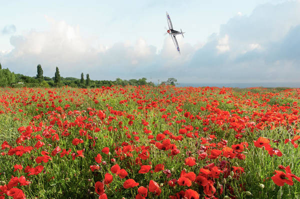 Photograph - Poppies And Silver Spitfire by Gary Eason