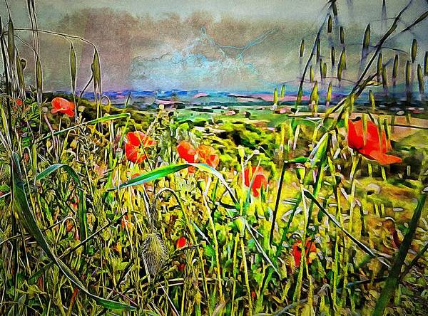 Wild Poppies Digital Art - Poppies Awaiting The Storm by Dorothy Berry-Lound