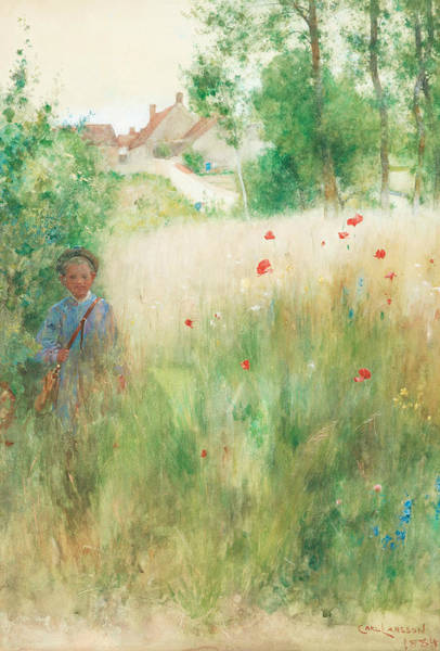 Painting - Poppies by Carl Larsson