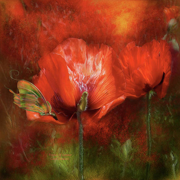 Mixed Media - Poppies Of Summer by Carol Cavalaris