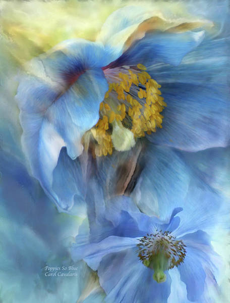 Mixed Media - Poppies So Blue by Carol Cavalaris
