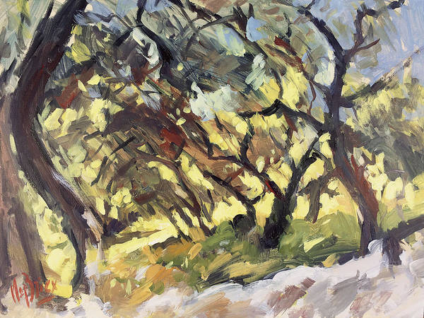 Wall Art - Painting - Popping Sunlight Through The Olive Grove by Nop Briex