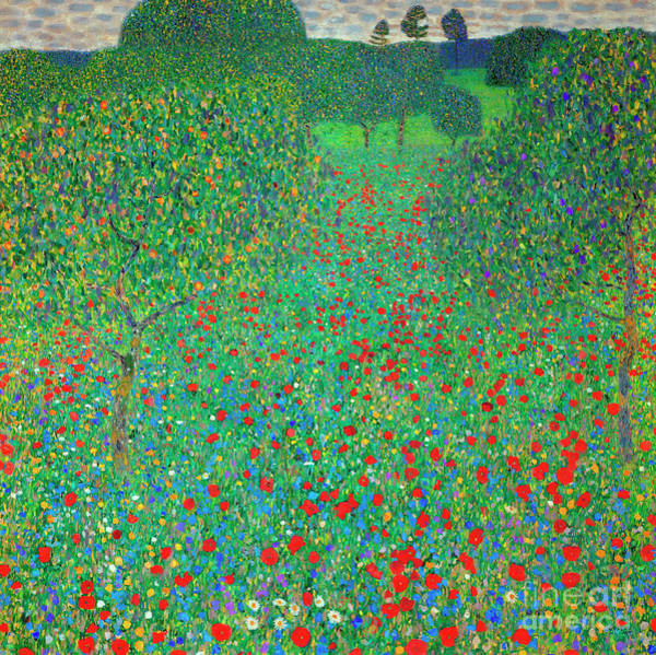 Field Of Flowers Wall Art - Painting - Poppy Field by Gustav Klimt